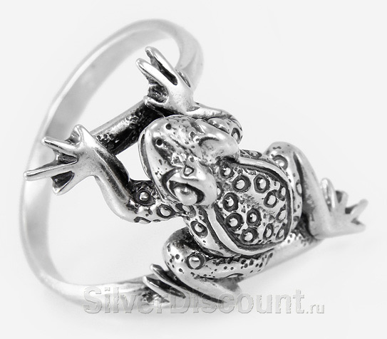 Кольцо из серебра - будущая царевна